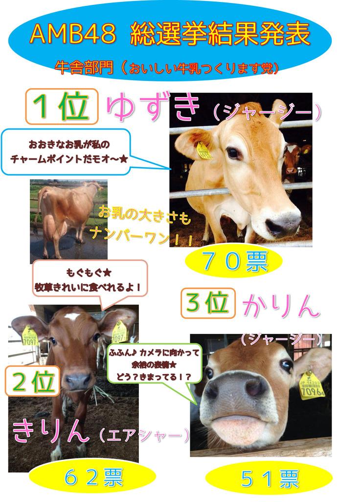 かわいい牛たちに癒やされました~♪