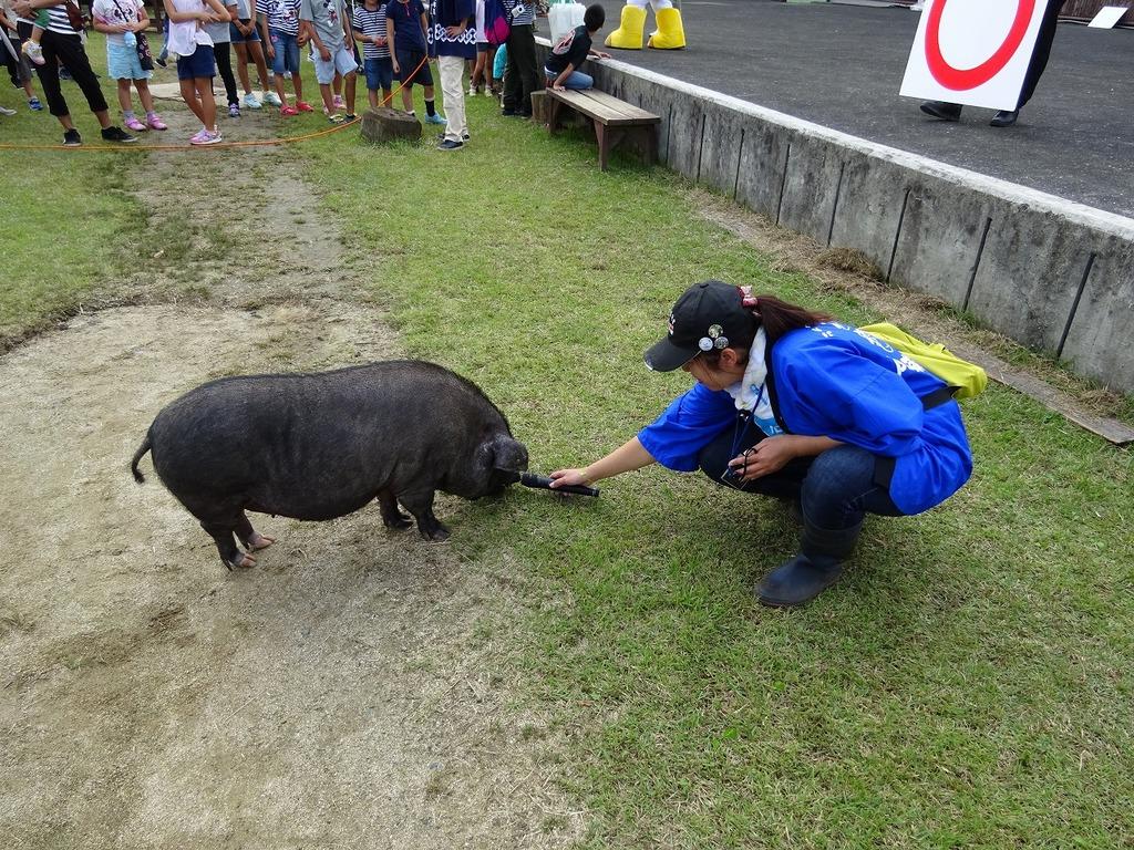 大人気!豚の『まさる子』も応援に来ちゃいました♪