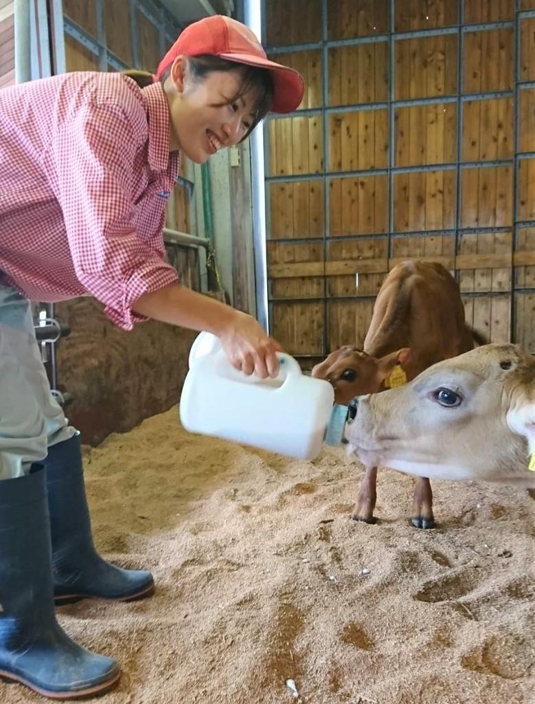 とっても甘えん坊な仔牛たちに毎日スタッフもメロメロ
