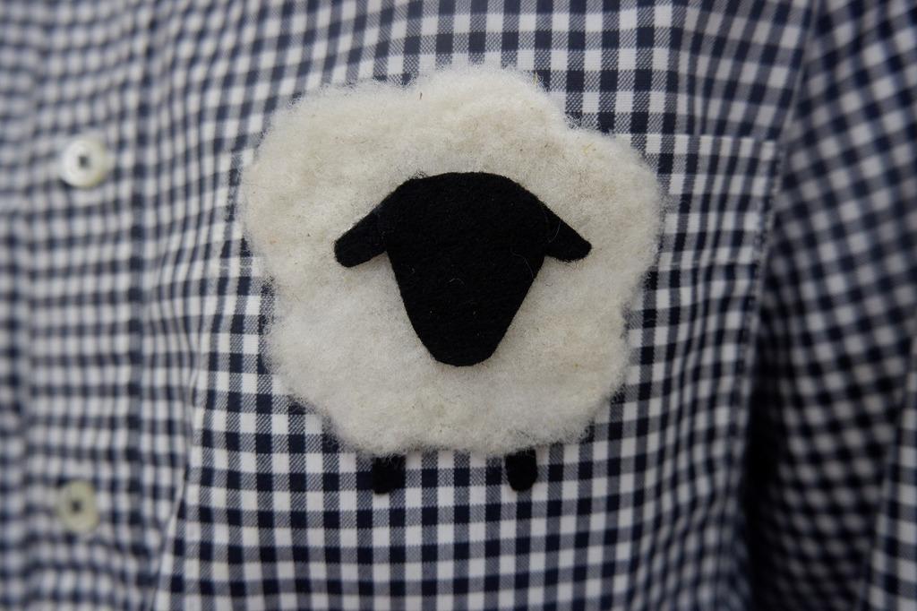 ふれあい教室『羊毛ブローチづくり』