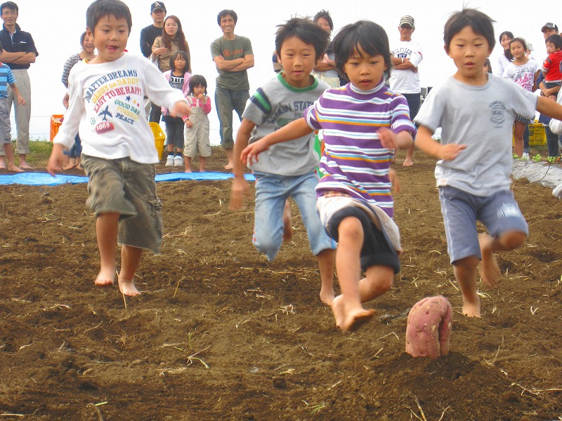 大収穫祭の様子☆種目:『からいもフラッグ』 開催:10月8・9・10日
