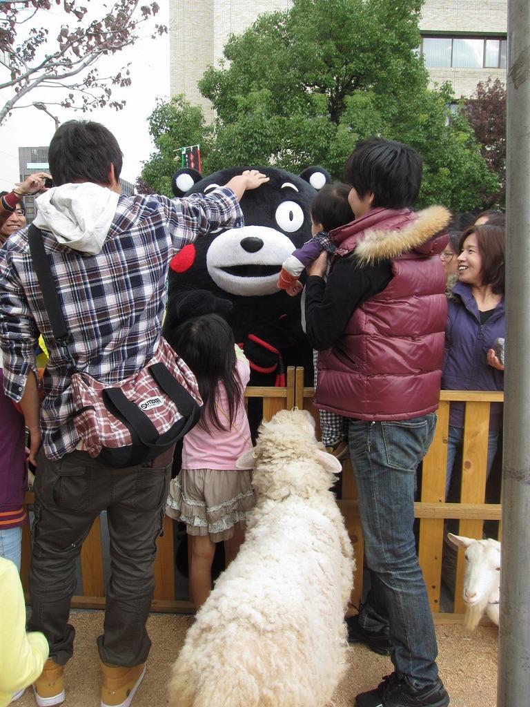 あの人気者も会いにきてくれまた~。(羊:アンヌ)『私も握手してくださ~い!!』