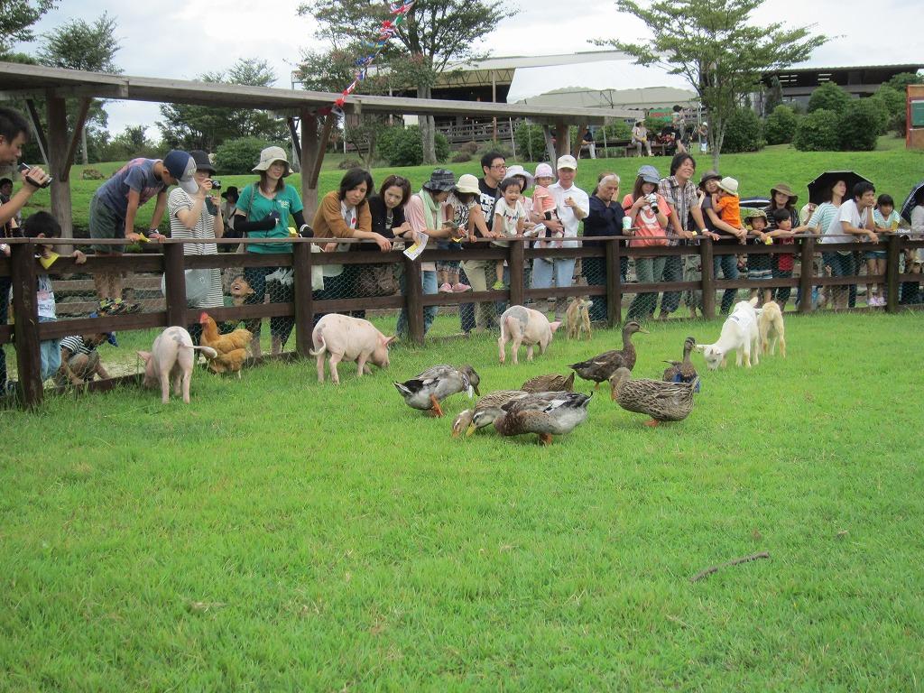 たくさんのお客様と動物たちが集まりました!