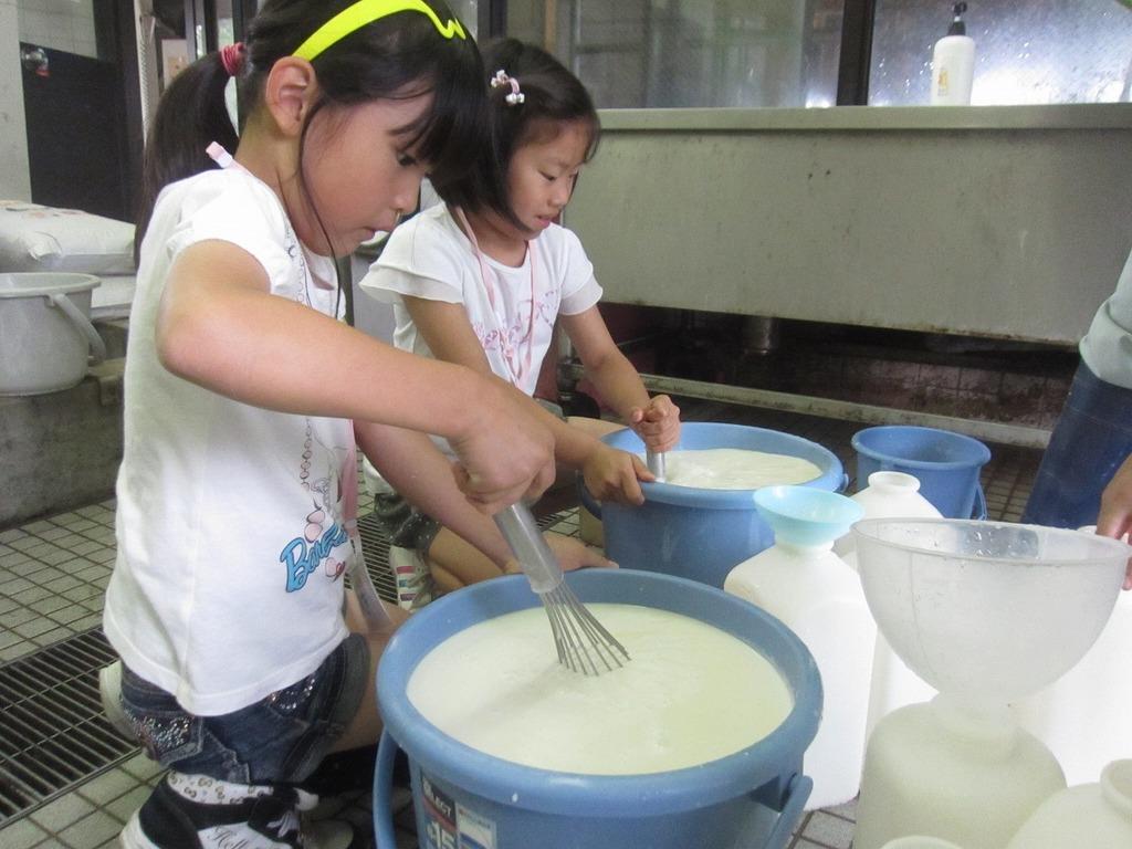 子牛のミルクを作ったよ! 今回は、3人で9頭分の粉ミルクをつくりました~☆