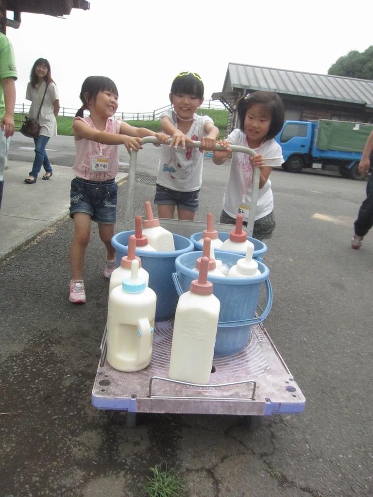 みんなで協力しながら、子牛たちのもとへミルクを運びます!