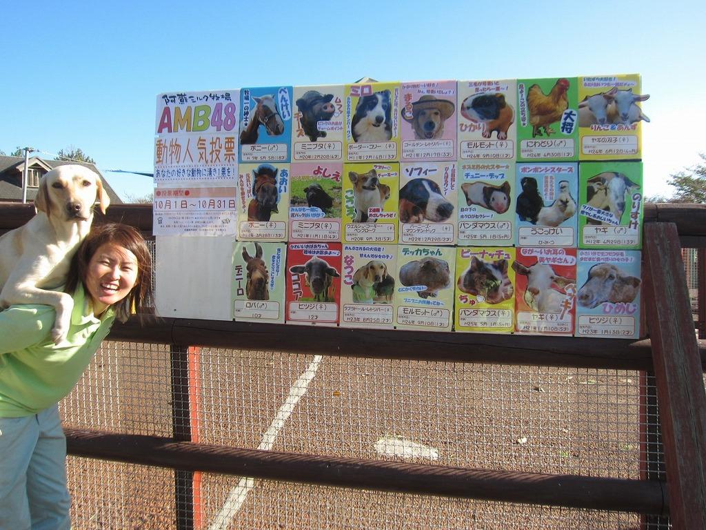 今年も開催します!秋のAMB動物総選挙☆