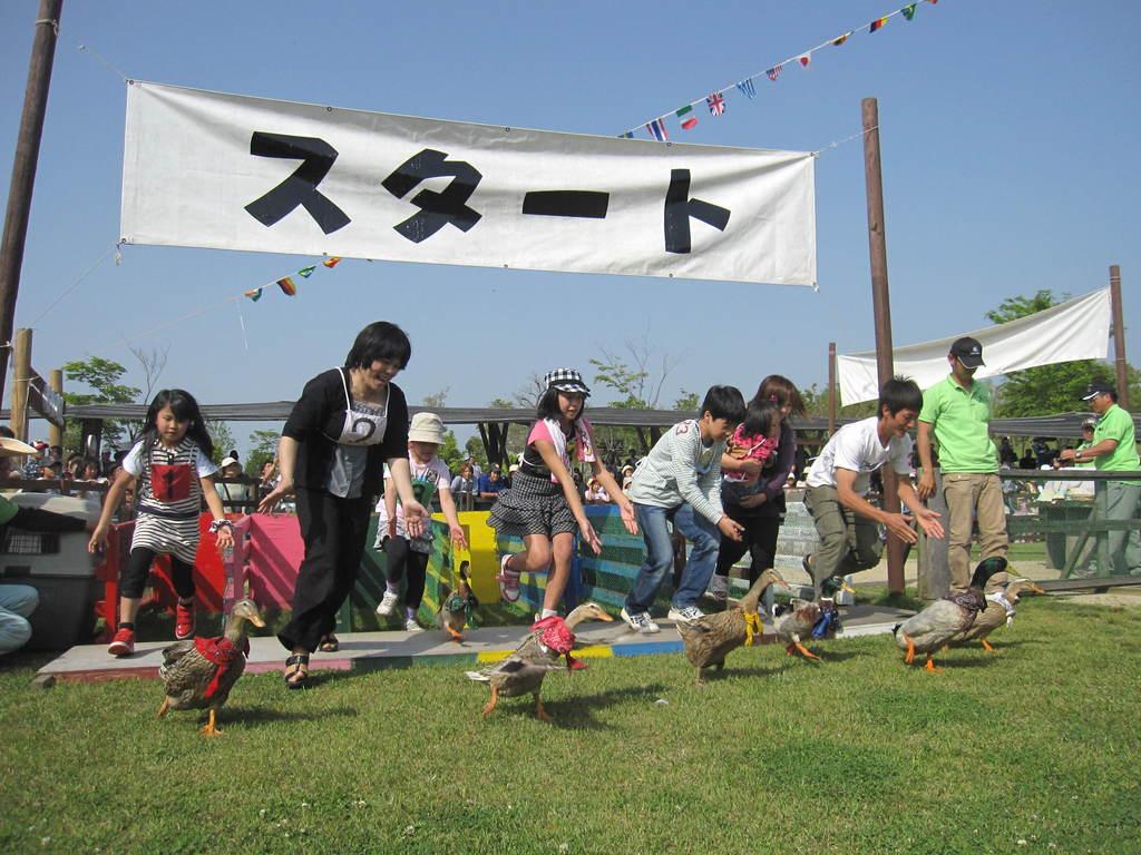 GWは恒例の『ダービーレース』を開催☆牧場を賑やかに盛り上げます!遊びに来てね♪