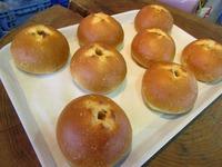 おすすめ牧場のパン屋さん新メニュー☆