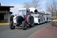 トラクターバスで、場内を周遊!