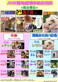 2020 AMB動物総選挙結果発表