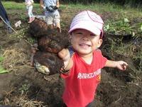 野菜収穫体験(畑の体験)