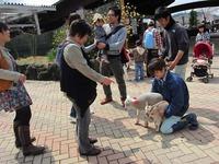 2011 『動物感謝式』を開催しました☆(平成23年4月9日)