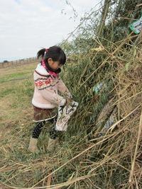 2012年『牧場のどんどや』今年も、賑やかに開催しました!報告パート1