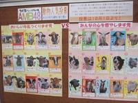 秋のAMB動物総選挙☆10月1日よりスタート!