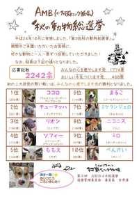 ★☆第3回『秋のAMB動物総選挙』★☆