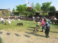 『ダービー祭り』5月3日~6日開催☆