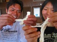 2013『コスモスと大収穫祭&チーズ祭り』お知らせ★チーズ2