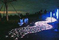 第6回 牧場の天の川~ミルキーウェイ~夜間開園17:00から【入園無料】