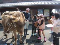 2014『子どもだけの!春スイーツづくりと牧場体験』開催しました☆その2☆