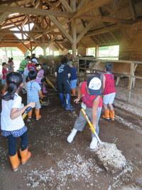 2014 『朝から過ごす牧場の1日体験記(7/29)』写真3