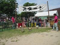 2015阿蘇ミルク牧場 GW☆ダービー祭り開催!
